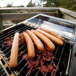 Corporate Law:  Why Corporations Are Like Hot Dogs