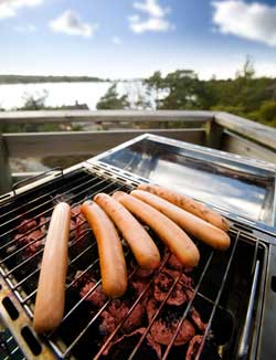 hot-dogs-and-corporate-law